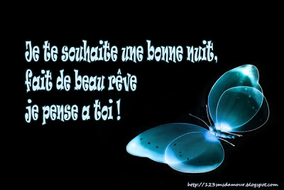 sms-d-amour-bonne-nuit-2