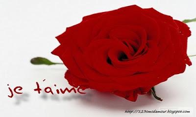 Petit message d'amour - sms d'amour