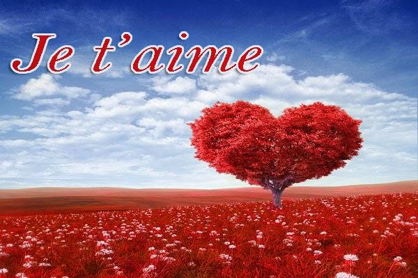 Jolie Mot sms d'amour