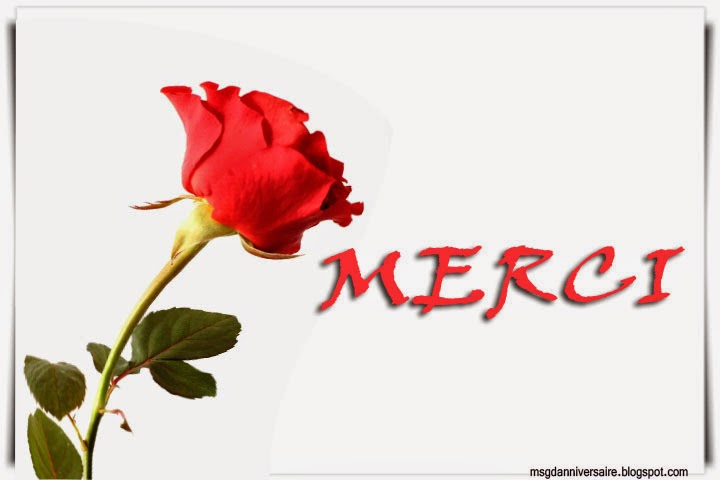 Message pour remercier un ami | Amourissima   Mots d'amour  SMS d