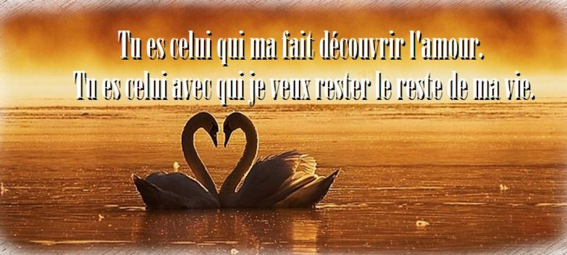 20 Phrases d'amour