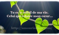 Texto d'amour