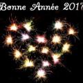 Message d'amour de Bonne Année 2017